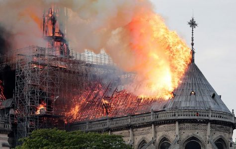 Notre Dame Fire Investigation